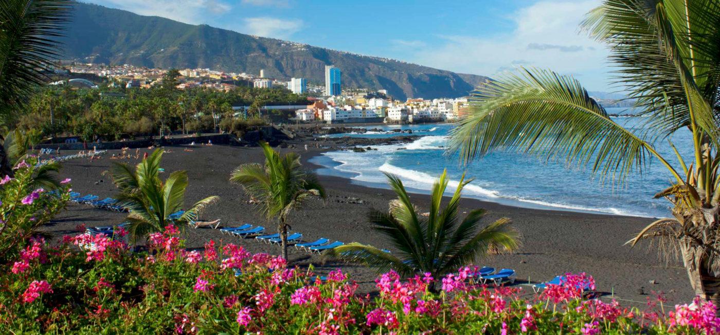 Puerto de la Cruz florece