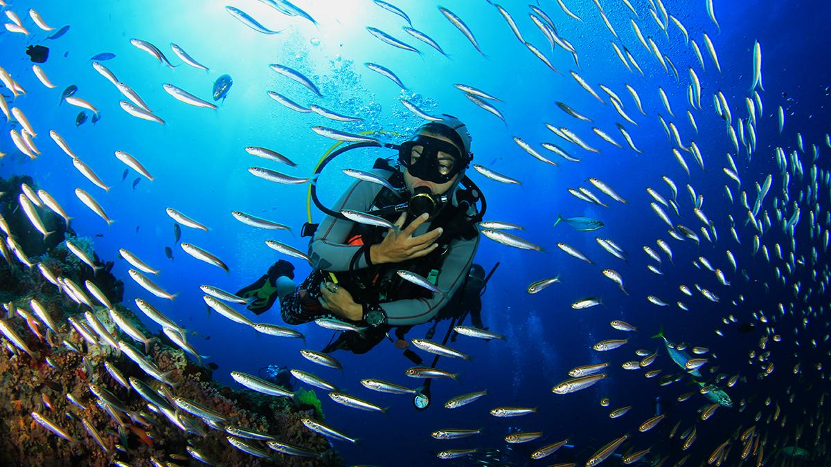 "XII Semana Científica Telesforo Bravo ""Investigando el mar: viaje al planeta agua"""